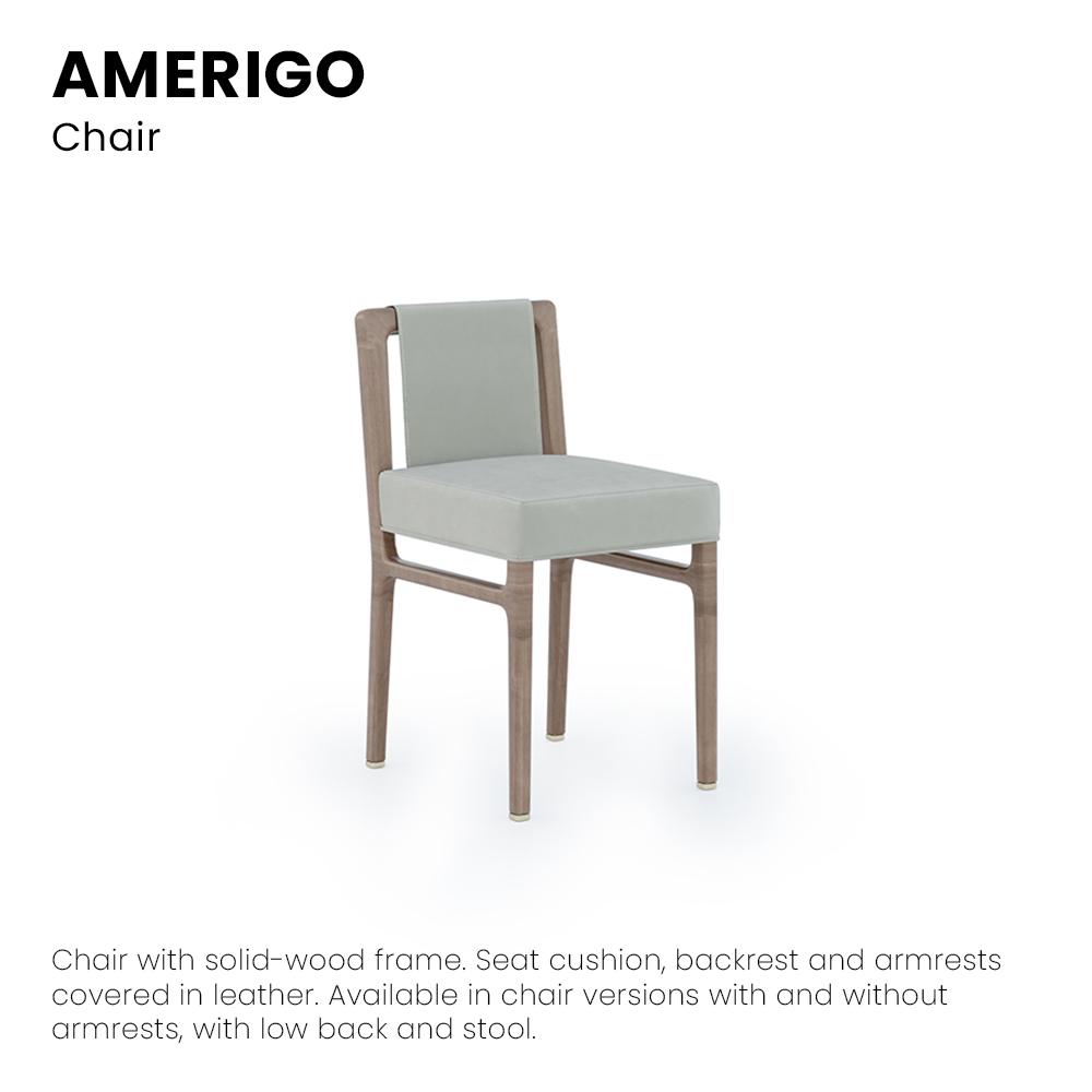 AmerigoSedia01