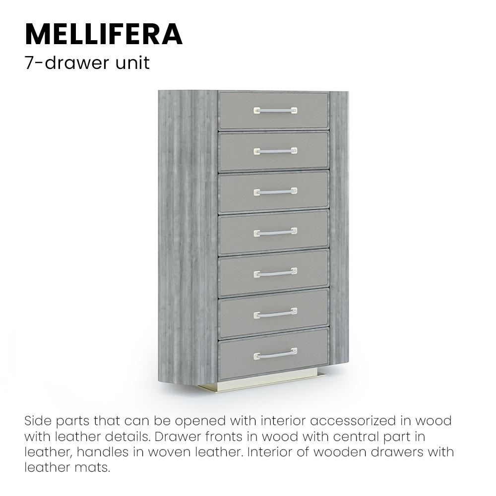 Mellifera_cassettiera02